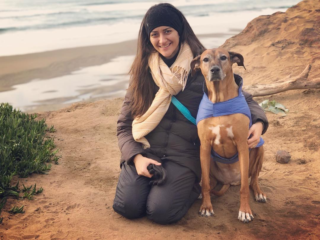 Hi! I'm @DrNatashaF — an AVCA certified horse, hound and human chiropractor. This is my shadow, Koba. She is a 10 year old Rhodesian Ridgeback who has been getting chiropractic care her whole life. Besides a little more white on her nose, she's as spunky as ever! Here we are on her birthday hike at Fort Funston. . I live in Berkeley, CA and am so excited to publicly announce the birth of TAILS & TRAILS CHIROPRACTIC. I love love love working with dogs and horses. . At the end of 2017, I channeled my childhood dreams into hard work and completed my AMERICAN VETERINARY CHIROPRATIC CERTIFICATION! . After 7+ years of studying and practicing animal chiropractic and energy healing, I am officially adding canine and equine adjustments to my current human healing services! . Call, text or emails me to get some healing for your bff. (510) 946-7799 TailsAndTrailsChiro@gmail.com . . . . . . #TailsandTrailschiro #AVCAcertified #animalchiropractor #spiritfriends #dreams #fortfunston #projectrr #rhodesianridgeback #horse #dog #animalchiropractic #equinechiropractic #caninechiropractic #ladyboss #hsp #pisces #empath #healer #helper #introvert #naturalmedicine #chiropractic #bioenergetics #dogsofinstagram #dogstagram #horsesofinstagram #homeopathy #DrNatashaFallahi #DrNatashaF #Berkeley